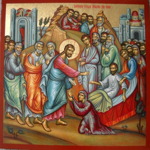 10th Sunday in Ordinary Time Year C 9th June 2013